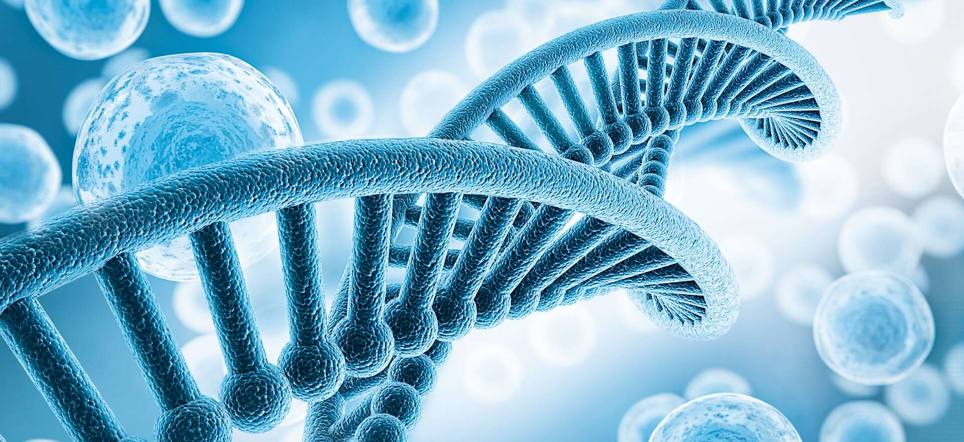 Life sciences: DNA