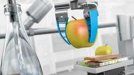 Food processing & packaging
